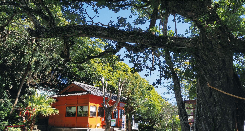 野島神社 写真